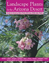 Landscaping Plants for the Arizona Desert